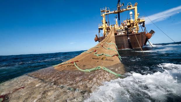 El+día+de+la+Ley+de+Pesca